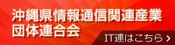 沖縄県情報通信関連産業団体連合会 IT連